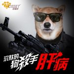 【The silent dog killer – Liver Disease】