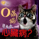 【Cats breathe with their mouth open represents a serious chronic disease!】