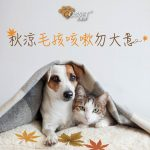 【Non-stop coughing of your furry friends in early Autumn?】