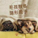 【Invisible Pet Killer in Autumn and Winter】