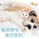 【Special care requirements for pets in winter】
