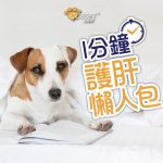 【Q&A: All rounded liver protection for dogs】