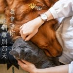 【Catch the time to love your pets until the end】